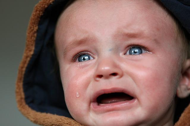 カビ アレルギー 原因 対処法 病名 ハウスクリーニング ゼヒトモ