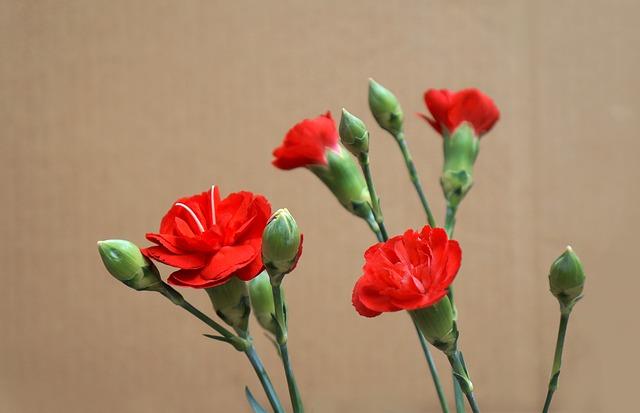 花束 値段 Zehitomo