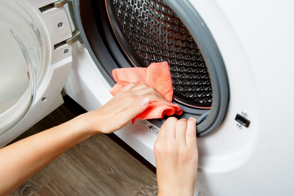 洗濯機・乾燥機掃除